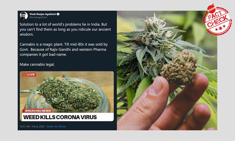 Marijuana Kills Coronavirus? Meme Viral With False Claims