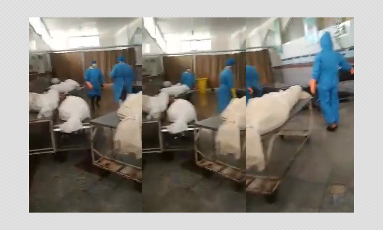 Video From Iran Shared As Body Bags Of Coronavirus Victims In Italy