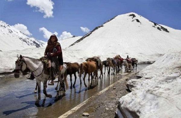 Kashmiri-minihighres-400x262