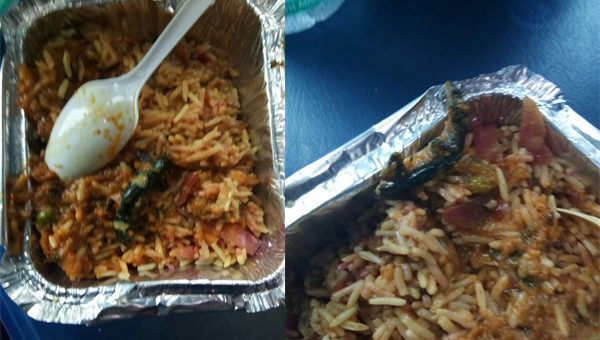 Passenger Finds Lizard In Veg Biryani Nearly A Week After CAG Slams Railway Food
