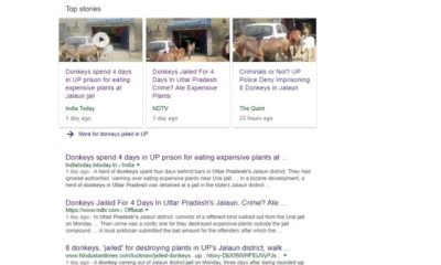 Donkeys Jailed in UP?