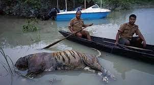 Image 3 Assam floods