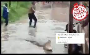 crocodile in Bihar