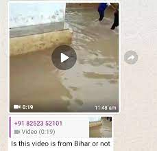 Crocodile in Bihar message
